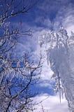 Πάγος Artsy Στοκ Εικόνες