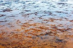 Πάγος Ripled σε μια λίμνη Στοκ εικόνες με δικαίωμα ελεύθερης χρήσης