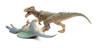 Πάλες Allosaurus με το spinosaurus στο άσπρο υπόβαθρο στοκ εικόνες με δικαίωμα ελεύθερης χρήσης