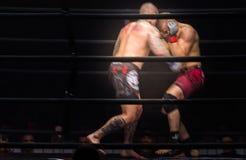 Πάλη μαχητών μπόξερ MMA στις πάλες χωρίς κανόνες στο δαχτυλίδι στοκ φωτογραφίες με δικαίωμα ελεύθερης χρήσης