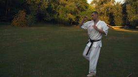Πάλη με τη σκιά της κύριας Karate κατάρτισης στο πρωί στο ξέφωτο στο πάρκο πόλεων φιλμ μικρού μήκους