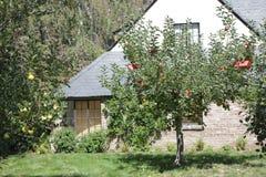 Πάλο Άλτο, Καλιφόρνια, το Σεπτέμβριο του 2016 σπίτι του Στηβ Τζομπς με τα δέντρα μηλιάς στοκ φωτογραφία με δικαίωμα ελεύθερης χρήσης