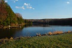 πάνθηρας λιμνών τελών φραγμά&ta Στοκ φωτογραφίες με δικαίωμα ελεύθερης χρήσης