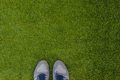 Πάνινα παπούτσια αθλητικών παπουτσιών στη φρέσκια πράσινη χλόη Αθλητισμός στο ανοικτό α στοκ εικόνα με δικαίωμα ελεύθερης χρήσης