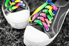 Πάνινα παπούτσια με τις δαντέλλες ουράνιων τόξων Στοκ Εικόνες