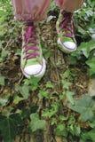 Πάνινα παπούτσια, παπούτσι αντισφαίρισης στοκ φωτογραφίες με δικαίωμα ελεύθερης χρήσης