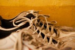 Πάνινα παπούτσια σε μια σειρά με τις δαντέλλες Στοκ φωτογραφία με δικαίωμα ελεύθερης χρήσης