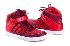 Πάνινα παπούτσια της Adidas για το τρέξιμο Στοκ Φωτογραφία