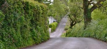 Πάνω-κάτω έναν στενό βρετανικό δρόμο χώρας Στοκ Εικόνες