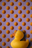 Πάπια ένα l'orange Στοκ φωτογραφία με δικαίωμα ελεύθερης χρήσης