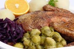 πάπια γευμάτων Στοκ εικόνες με δικαίωμα ελεύθερης χρήσης