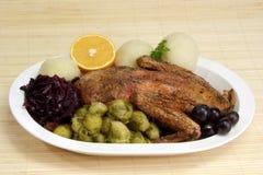 πάπια γευμάτων Στοκ φωτογραφία με δικαίωμα ελεύθερης χρήσης