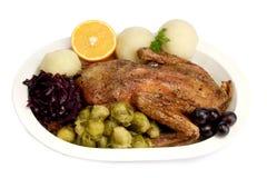 πάπια γευμάτων Στοκ Φωτογραφία
