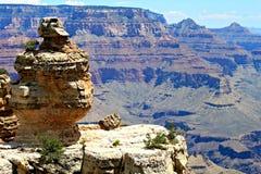 Πάπια σε έναν βράχο, μεγάλο φαράγγι, AZ στοκ εικόνα