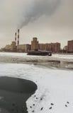 πάπιες Μόσχα Στοκ φωτογραφία με δικαίωμα ελεύθερης χρήσης