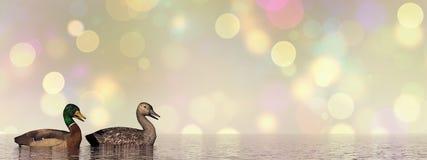 Πάπιες πρασινολαιμών - τρισδιάστατες δώστε Στοκ Εικόνες