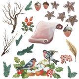 Πάπυρος και πουλιά Watercolor για τις διαφορετικές περιπτώσεις ελεύθερη απεικόνιση δικαιώματος