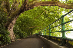 πάρκο αλεών Στοκ Φωτογραφίες