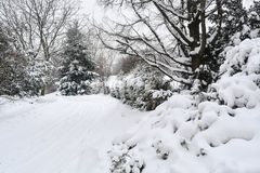 Πάρκο αποκλεισμένο από τα χιόνια Στοκ Εικόνες