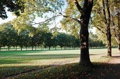 Πάρκο γλυπτών Vigeland, ΟΣΛΟ, ΝΟΡΒΗΓΙΑ Στοκ Φωτογραφίες