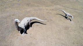 Πάρκο δεινοσαύρων της Μογγολίας Στοκ Εικόνα