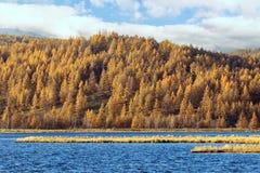 Πάρκο εθνικών δρυμός βουνών Arxan Στοκ εικόνα με δικαίωμα ελεύθερης χρήσης