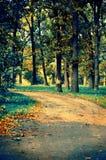 πάρκο ειρηνικό Στοκ φωτογραφία με δικαίωμα ελεύθερης χρήσης