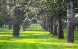 πάρκο ειρηνικό Στοκ εικόνα με δικαίωμα ελεύθερης χρήσης