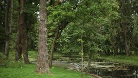 πάρκο εισόδων πόλεων φιλμ μικρού μήκους