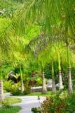 πάρκο ελιγμού στοκ φωτογραφία με δικαίωμα ελεύθερης χρήσης