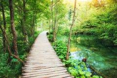 Πάρκο λιμνών Plitvice στην Κροατία Ευρώπη Τονίζοντας επίδραση Instagram Στοκ Εικόνες