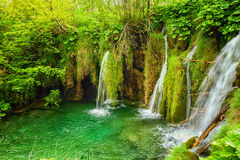 Πάρκο λιμνών Plitvice στην Κροατία Στοκ Εικόνες