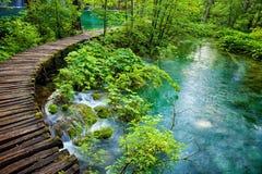 Πάρκο λιμνών Plitvice στην Κροατία Στοκ Εικόνα