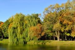 Πάρκο και λίμνη μονών Novodevichy το φωτεινό φθινόπωρο Στοκ φωτογραφία με δικαίωμα ελεύθερης χρήσης