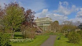 Πάρκο και Greenhous στους βοτανικούς κήπους του Δουβλίνου την άνοιξη στοκ εικόνα με δικαίωμα ελεύθερης χρήσης
