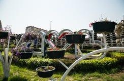Πάρκο λουλουδιών στο Γκρόζνυ Στοκ εικόνα με δικαίωμα ελεύθερης χρήσης