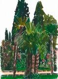 Πάρκο με τους φοίνικες και τα κυπαρίσσια Στοκ φωτογραφία με δικαίωμα ελεύθερης χρήσης