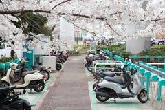πάρκο μοτοσικλετών στοκ φωτογραφία με δικαίωμα ελεύθερης χρήσης