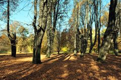 πάρκο μυστηρίου φθινοπώρ&omicro Στοκ εικόνες με δικαίωμα ελεύθερης χρήσης