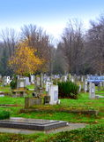 Πάρκο νεκροταφείων φθινοπώρου Στοκ Φωτογραφίες