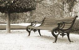 πάρκο πάγκων Στοκ Εικόνα