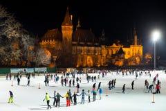 Πάρκο πάγου στη Βουδαπέστη στοκ φωτογραφία με δικαίωμα ελεύθερης χρήσης