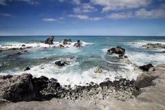Πάρκο παραλιών okipa Ho `, Maui, Χαβάη, ΗΠΑ Στοκ Εικόνες