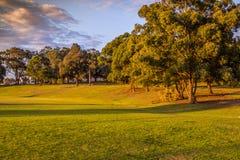 Πάρκο πυρόξανθο Σίδνεϊ O'Neilll Στοκ φωτογραφία με δικαίωμα ελεύθερης χρήσης