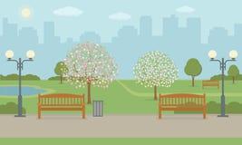 Πάρκο πόλεων με τα benchs, το χορτοτάπητα και τα ανθίζοντας δέντρα Στοκ Φωτογραφίες
