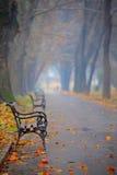 πάρκο πόλεων πάγκων Στοκ Εικόνα