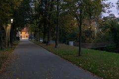 πάρκο πόλεων τη νύχτα με τους λαμπτήρες και τη λεωφόρο με τα δέντρα στο νότο Στοκ φωτογραφίες με δικαίωμα ελεύθερης χρήσης