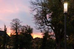 πάρκο πόλεων τη νύχτα με τους λαμπτήρες και τη λεωφόρο με τα δέντρα στο νότο Στοκ Φωτογραφίες