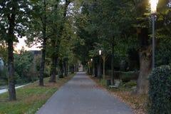 πάρκο πόλεων τη νύχτα με τους λαμπτήρες και τη λεωφόρο με τα δέντρα στο νότο Στοκ Φωτογραφία