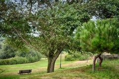Πάρκο πόλεων του Πόρτο Στοκ φωτογραφίες με δικαίωμα ελεύθερης χρήσης